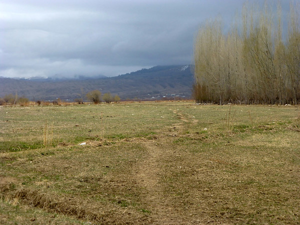Fields Near Tamga