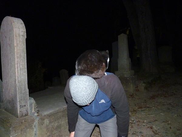 Halloween In Transylvania - Black Cat